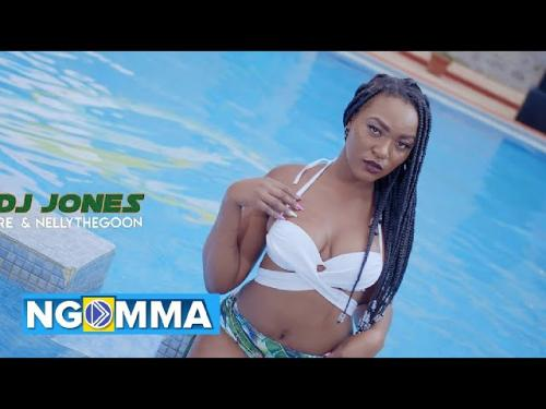 VDJ Jones Ft. Nelly The Goon Wyre Amplifier mp3 download