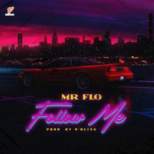 Mr Flo Follow Me mp3 download