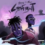 Savage Confident ft. Buju mp3 download