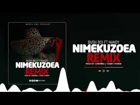 Bush Boi Nimekuzoea Remix Ft. Nandy mp3 download