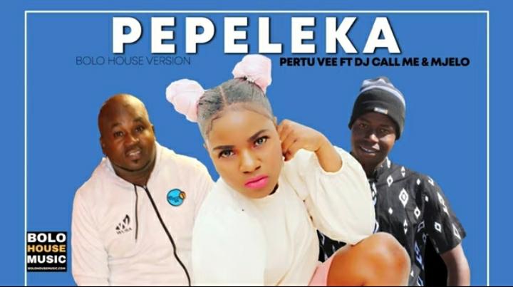 Pertu Vee Pepeleka Ft. Dj Call Me & Mjelo mp3 download
