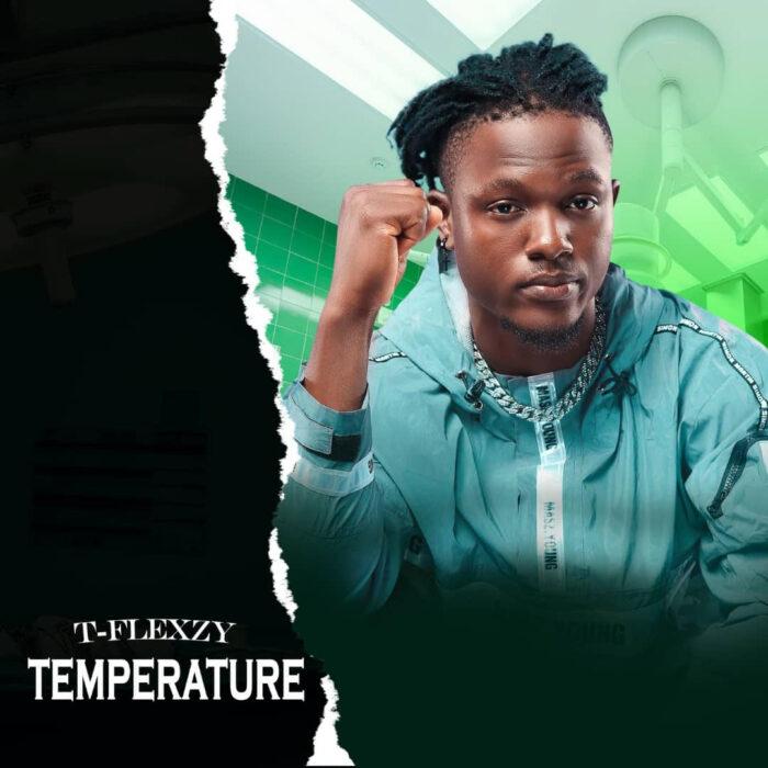 T-Flexzy Temperature mp3 download