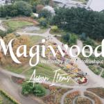 Magnito Magiwood Ft. Bovi mp3 download