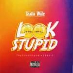 Shatta Wale Look Stupid mnp3 download