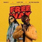 Tripcy & Lady Du Free Me ft. DJ Pee Raven mp3download