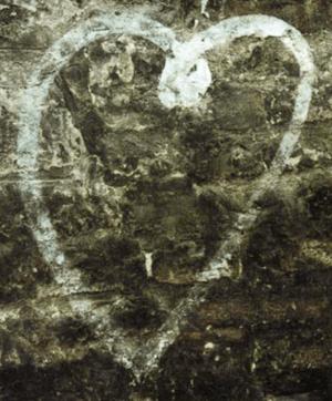 Cro-Magnon Heart (Source: Paul Silverzweig/PBS)