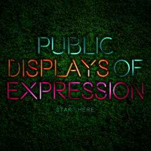 Issue.16: Public Displays of Expression