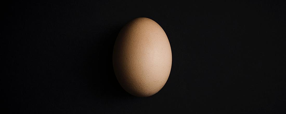 Egg in Black Background