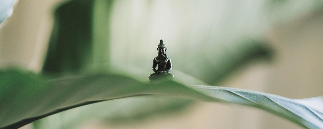 Buddha Behind Leaves