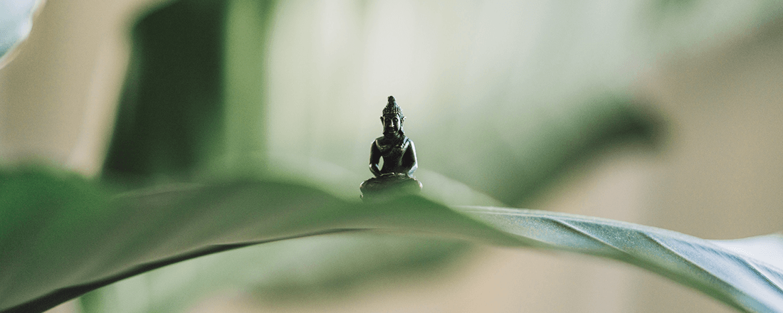 Buddha Behind Leaves