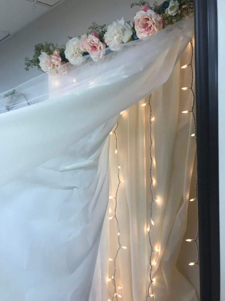 Diy Lit Tulle Backdrop Six Clever Sisters