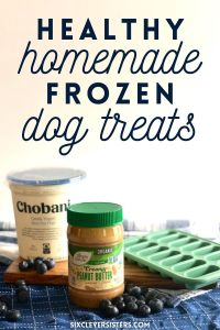 Healthy Homemade Dog Treats   Frozen Dog Treats   Healthy Dog Treats   Homemade Treats for my Dog   Blueberry Frozen Dog Treats   Peanut Butter Dog Treats   Easy Healthy Dog Treat Recipe   Looking for a healthy dog treat recipe for your pup? This one is a simple three-ingredient recipe with no added sugars and makes a tasty cool treat for your pup in the summer. Find the recipe at SixCleverSisters.com.