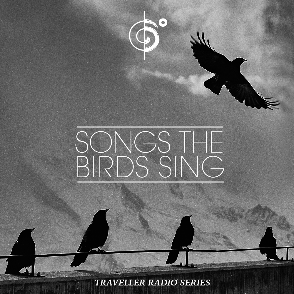 "Traveler Installment 369 – Traveler's ""Songs The Birds Sing"" Mix"