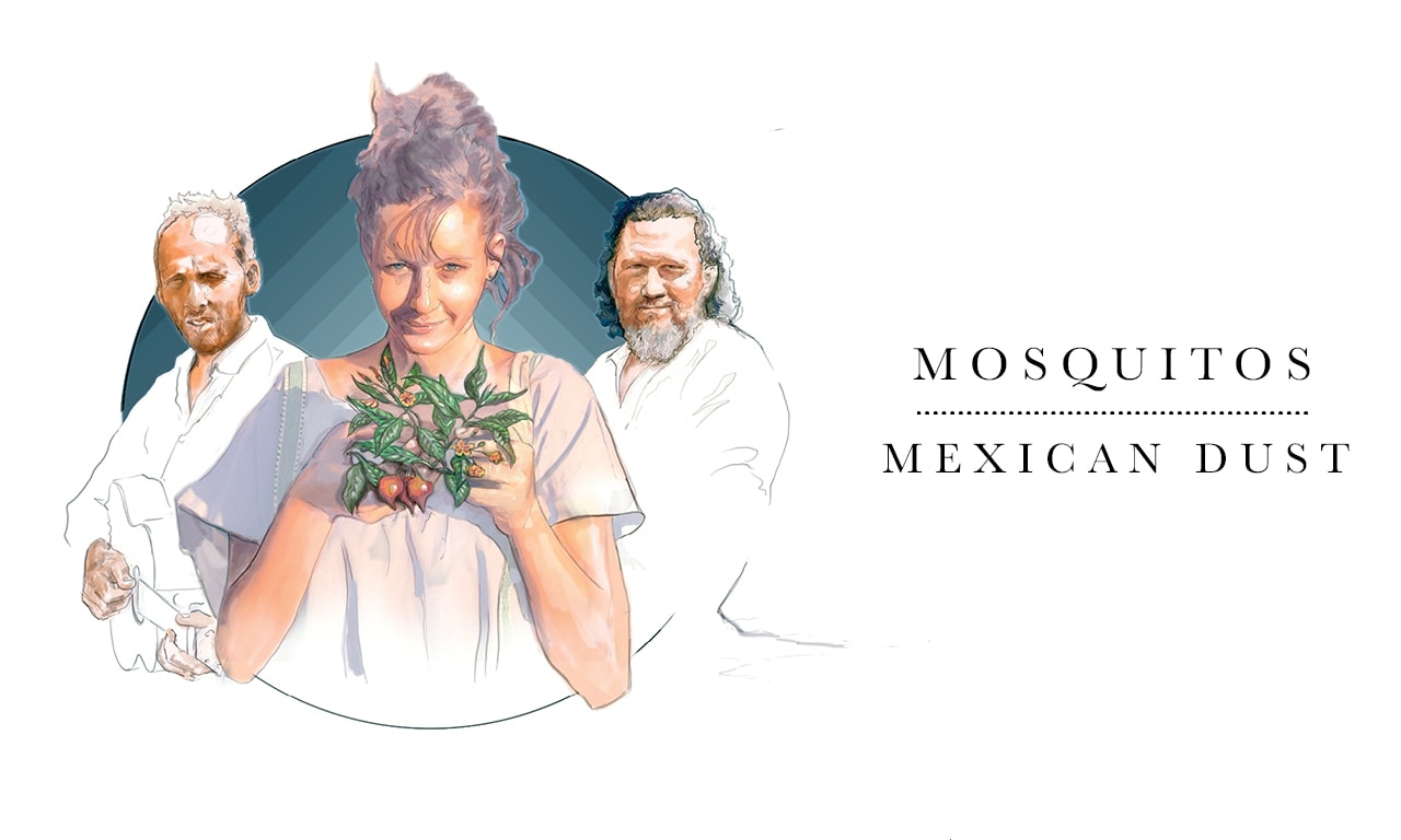 [Album Review] Mosquitos – Mexican dust