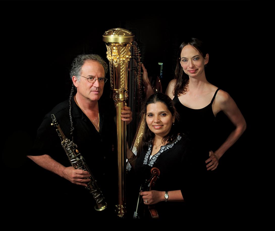 Elements (George Brooks, Kala Ramnath and Gwyneth Wentink) (artist)