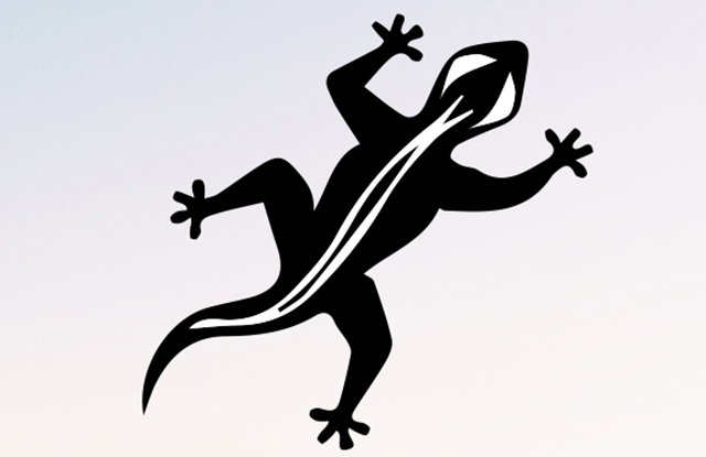 Disco Gecko (Label)
