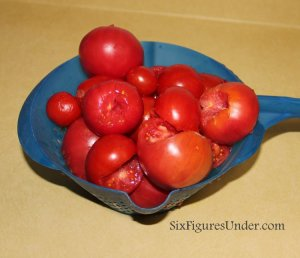The Best Way to Can Tomatoes: TOMATO PUREE. Seriously the EASIEST and FASTEST way to can tomatoes. Can now, use later for making homemade spaghetti sauce, tomato soup, stews and more.