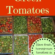 🍅How to Store Green Tomatoes So They'll Ripen 🍅