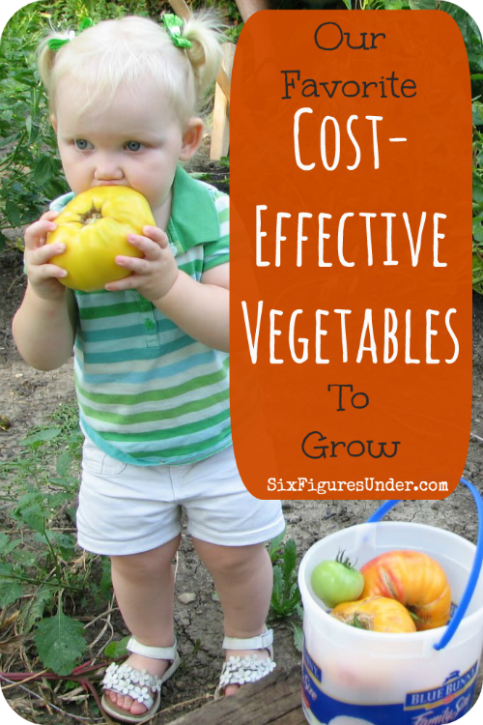 We grow some veggies because they're fun and yummy, but we make sure to plant lots of frugal veggies. Here a few of our favorite cost-effective vegetables to grow.