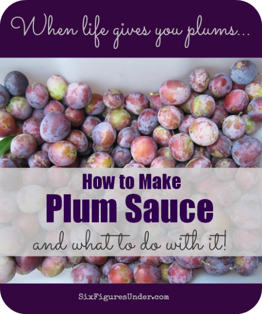 I never knew how versatile plum puree was until I had several trees-worth of plums on my hands. Now that we have discovered plum sauce, we can't live without it!