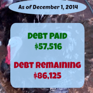 November 2014 Debt Repayment Progress Report