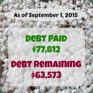 August 2015 Debt Repayment Progress Report