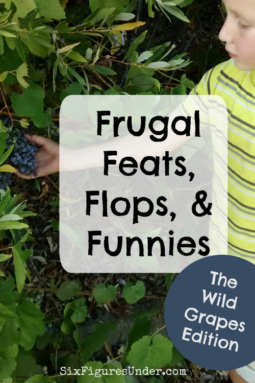 Frugal Feats Flops and Funnies- Wild Grapes