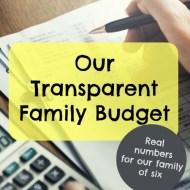 November 2016 Budget Report