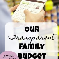 Family Budget Update– May 2017