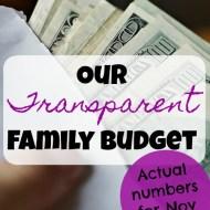Family Budget Update– November 2017