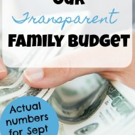 Family Budget Update– September 2017