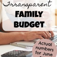 Family Budget Update– June 2017