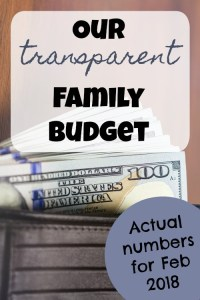 Transparent Family Budget Update– February 2018