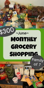 Monthly Grocery Shopping Haul– June 2018