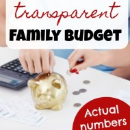 Transparent Family Budget Update — July 2018