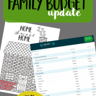 Real Family Budget Update– January 2019