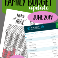 Real Family Budget Update – June 2019