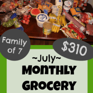 Monthly Grocery Shopping – July 2019