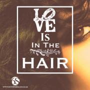 fun & fabulous hair quotes