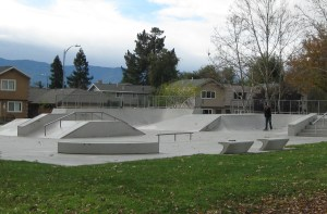 Great Oaks Skatepark small