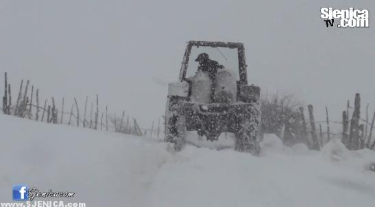 Bagacice smetovi i snijeg / Sjenica / 10.02.2015.