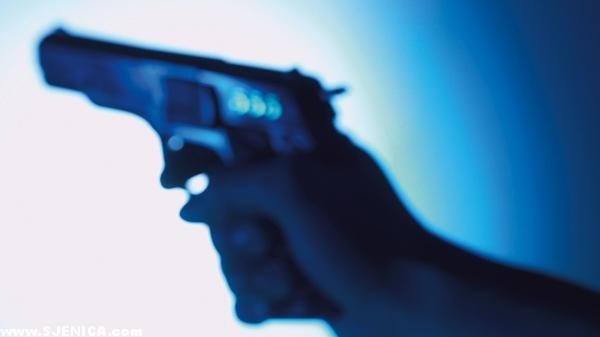 pistolj pucanje sjenica.com