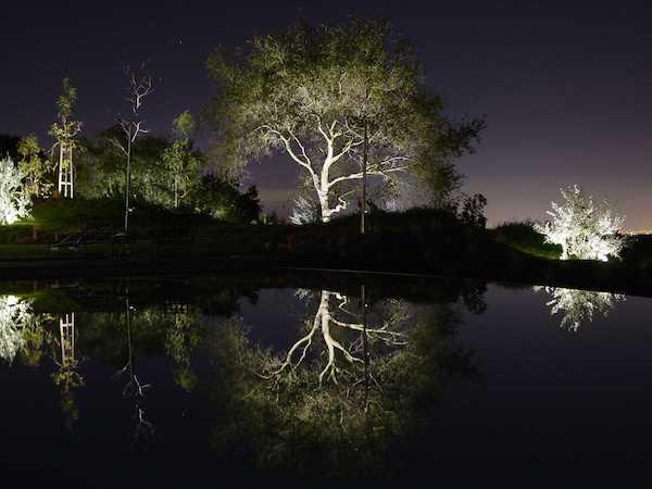 landscape-lighting-2