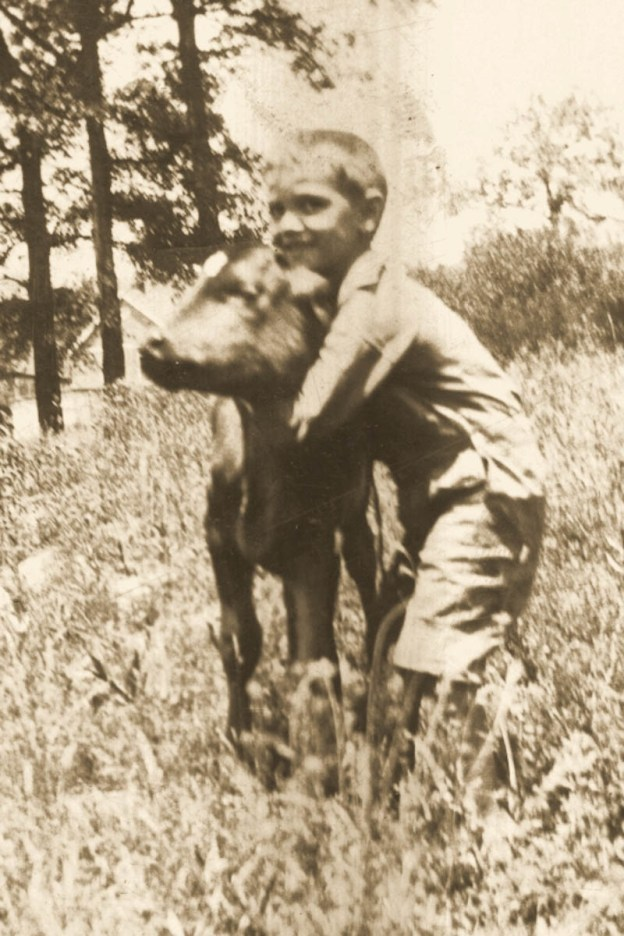 Boy with pet calf 1920s Knoxville, Tennessee