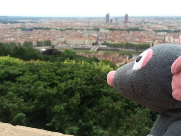 Pedrata Lyon view 3