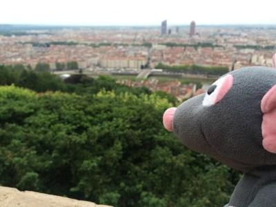 Classic Lyon view