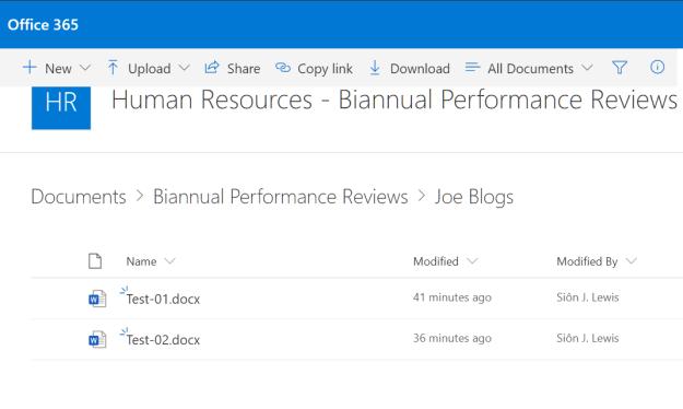 Human Resources Team Biannual Performance Review Chanel Joe Blogs Folder