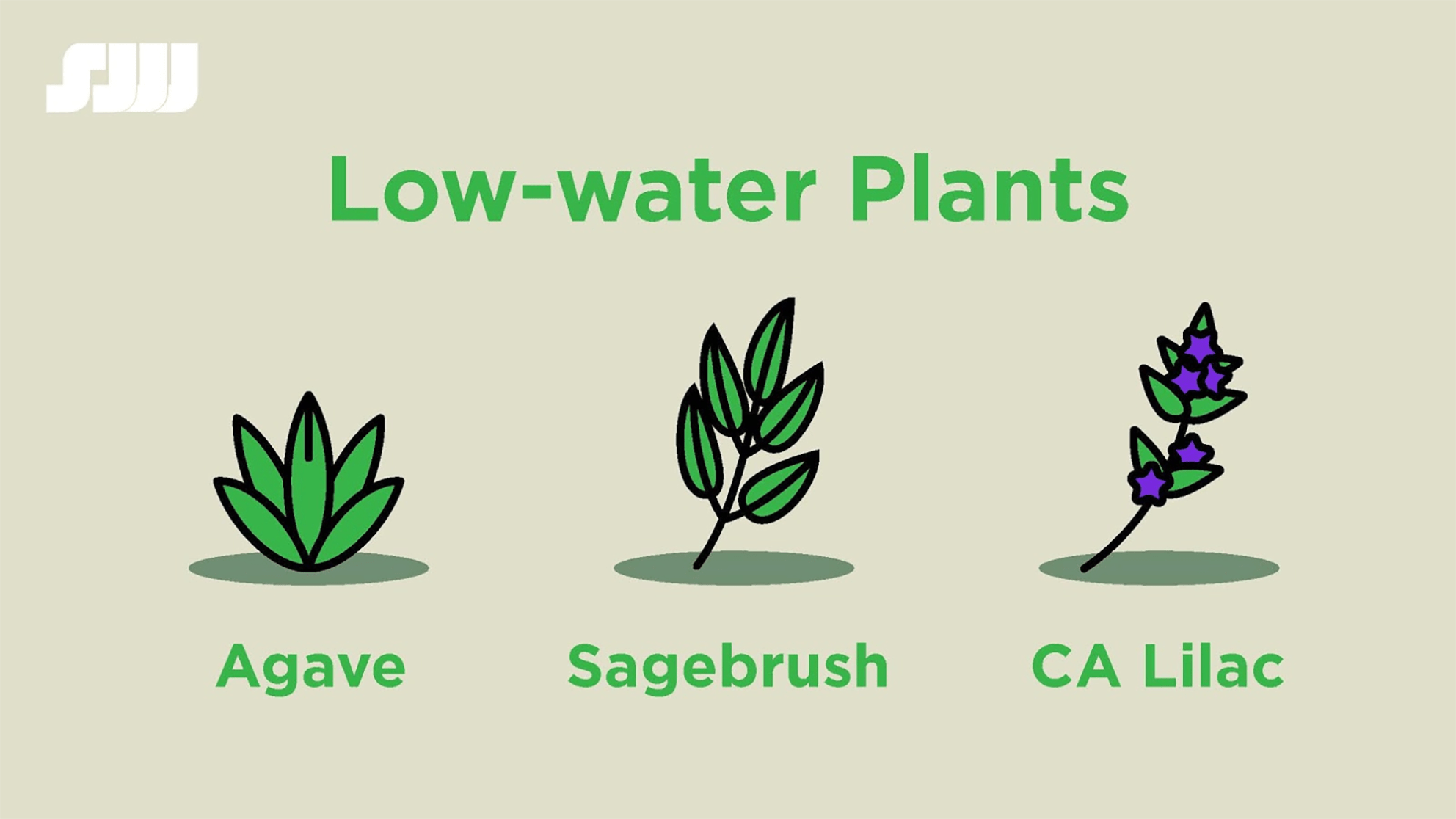 water-smart landscaping san jose