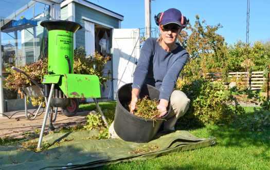 höstarbete i trädgården