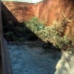 Trädgårdscontainern vid lördagens början